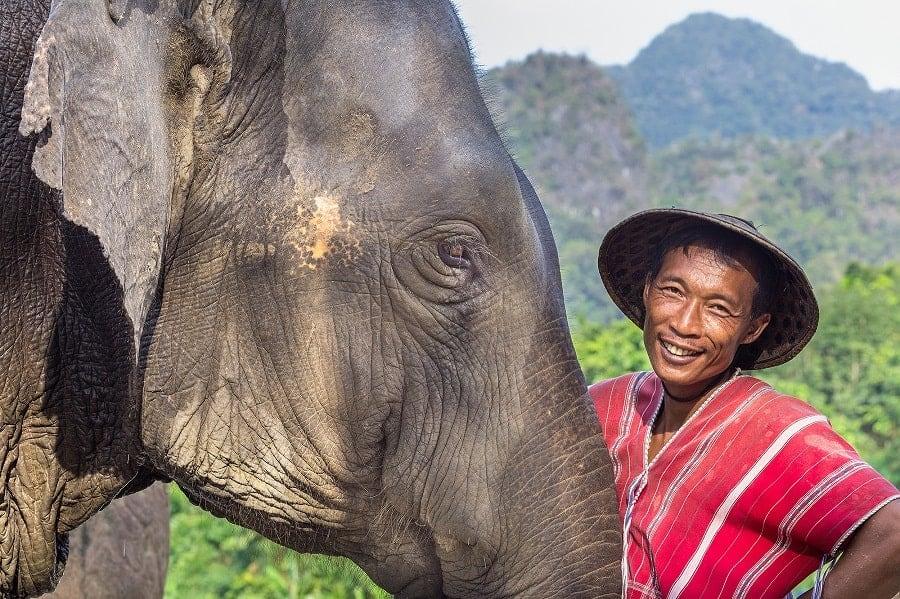 thailand elephant hills